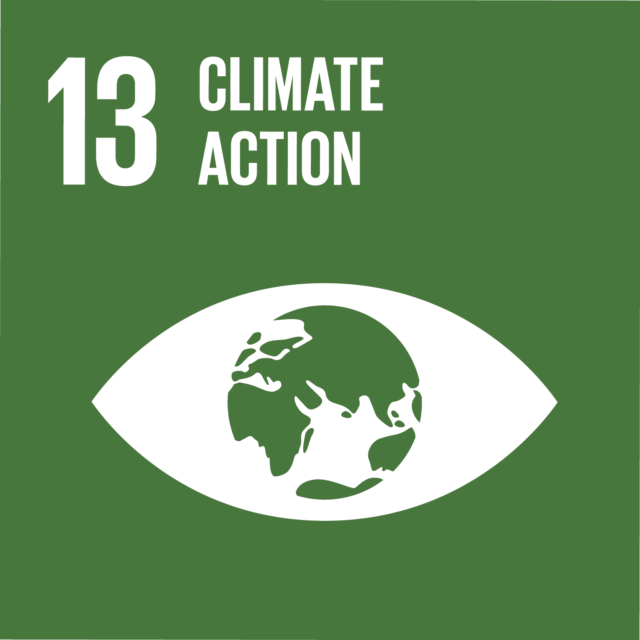 UN sustainability goal icon